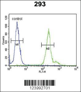Anti-GPM6A Rabbit Polyclonal Antibody