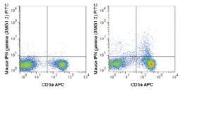 Anti-IFNG Rat monoclonal antibody FITC (Fluorescein) [clone: XMG1.2]