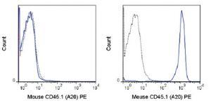 Anti-CD45.1 Mouse monoclonal antibody PE (Phycoerythrin) [clone: A20]