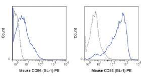 Anti-CD86 Rat monoclonal antibody PE (Phycoerythrin) [clone: GL-1]