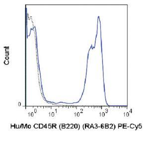 Anti-CD45R Rat monoclonal antibody PE (Phycoerythrin)/Cy5® [clone: RA3-6B2]