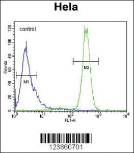 Anti-p19 Rabbit Polyclonal Antibody