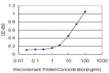 Anti-TNFRSF25 Mouse Monoclonal Antibody