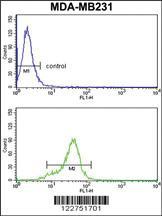 Anti-AGPAT4 Rabbit Polyclonal Antibody