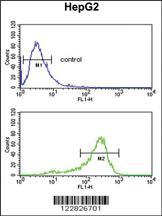 Anti-ACY3 Rabbit Polyclonal Antibody