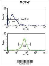 Anti-DIO2 Rabbit Polyclonal Antibody