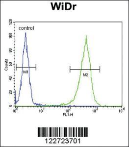 Anti-CCDC3 Rabbit Polyclonal Antibody