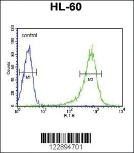 Anti-RGS1 Rabbit Polyclonal Antibody