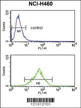 Anti-FPR3 Rabbit Polyclonal Antibody