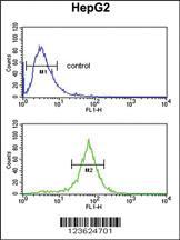 Anti-UBAP1 Rabbit Polyclonal Antibody