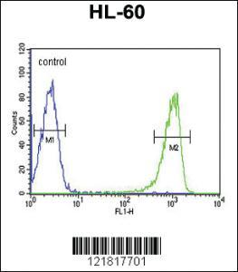 Anti-TNFSF11 Rabbit Polyclonal Antibody