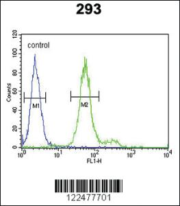 Anti-ADAMTS18 Rabbit Polyclonal Antibody