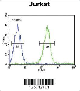 Anti-DTX1 Rabbit Polyclonal Antibody