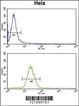 Anti-INSIG1 Rabbit Polyclonal Antibody