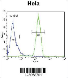 Anti-SKA3 Rabbit Polyclonal Antibody
