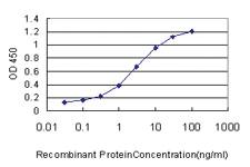 Anti-CAMKV Mouse Monoclonal Antibody