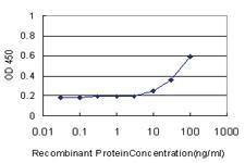 Anti-CDCA3 Mouse Monoclonal Antibody