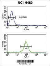 Anti-EXOC5 Rabbit Polyclonal Antibody
