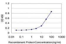 Anti-CXCL12 Mouse Monoclonal Antibody
