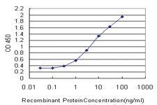 Anti-DHX8 Mouse Monoclonal Antibody