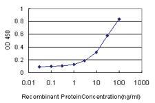 Anti-DNASE1L1 Mouse Monoclonal Antibody
