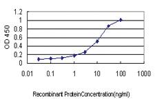 Anti-DST Mouse Monoclonal Antibody