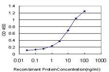 Anti-ELF1 Mouse Monoclonal Antibody