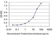 Anti-ELF3 Mouse Monoclonal Antibody