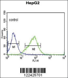 Anti-OR2H2 Rabbit Polyclonal Antibody