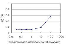 Anti-F8 Mouse Monoclonal Antibody
