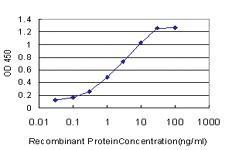 Anti-FADS3 Mouse Monoclonal Antibody