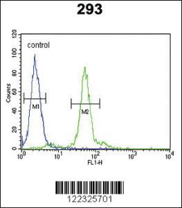 Anti-LOX Rabbit Polyclonal Antibody