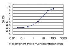 Anti-GNAI2 Mouse Monoclonal Antibody