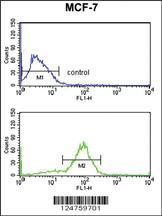 Anti-ANO7 Rabbit Polyclonal Antibody
