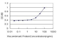 Anti-GPD1 Mouse Monoclonal Antibody