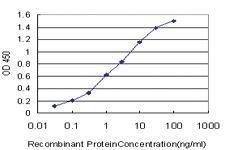 Anti-NPSR1 Mouse Monoclonal Antibody