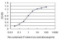 Anti-GRB10 Mouse Monoclonal Antibody