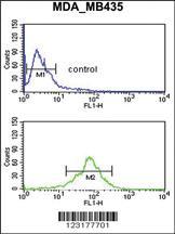 Anti-ACOT8 Rabbit Polyclonal Antibody