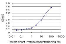 Anti-GUCY2C Mouse Monoclonal Antibody