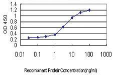 Anti-ITGA7 Mouse Monoclonal Antibody