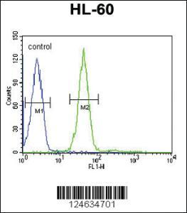 Anti-GRPR Rabbit Polyclonal Antibody
