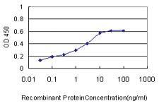 Anti-LOC124220 Mouse Monoclonal Antibody