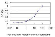 Anti-LRRC8D Mouse Monoclonal Antibody