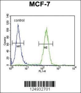 Anti-THOC7 Rabbit Polyclonal Antibody