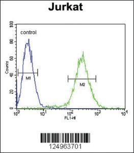 Anti-NOL9 Rabbit Polyclonal Antibody