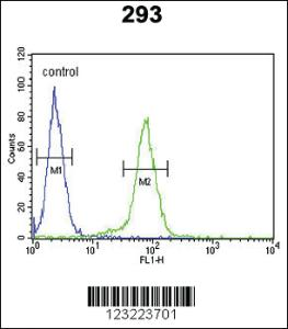 Anti-CLDN8 Rabbit Polyclonal Antibody