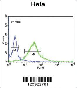 Anti-FMOD Rabbit Polyclonal Antibody