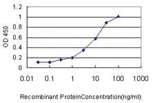 Anti-ULK4 Mouse Monoclonal Antibody