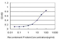 Anti-MAML2 Mouse Monoclonal Antibody
